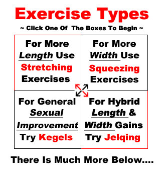 Exercises to increase dick size